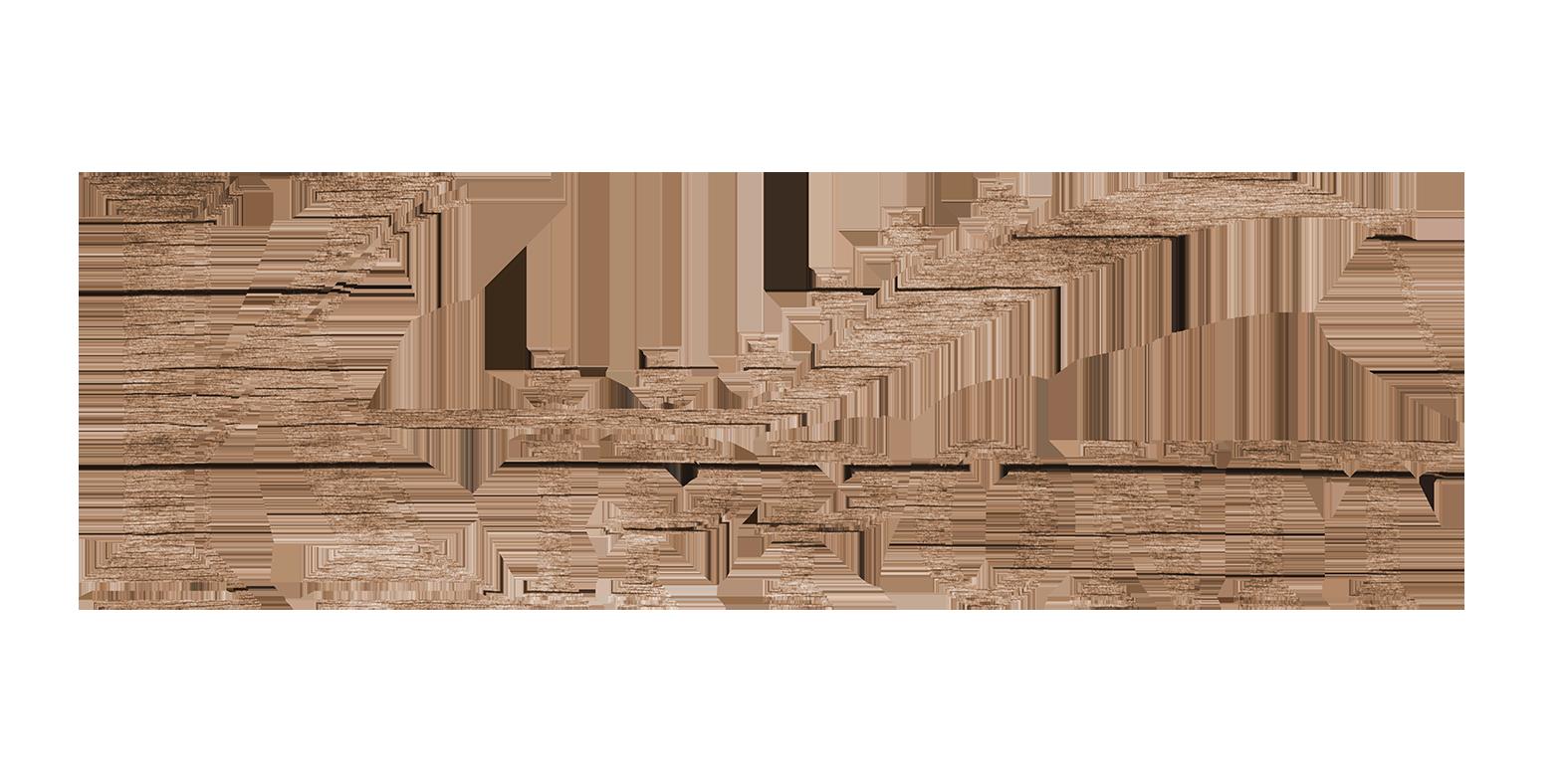 Kipponit